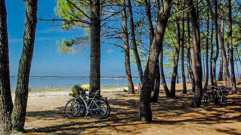 Bassin d'Arcachon camping plage